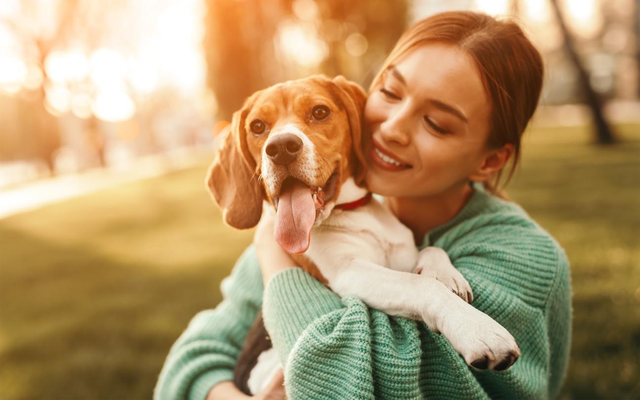 Dog Grooming Software Reviews